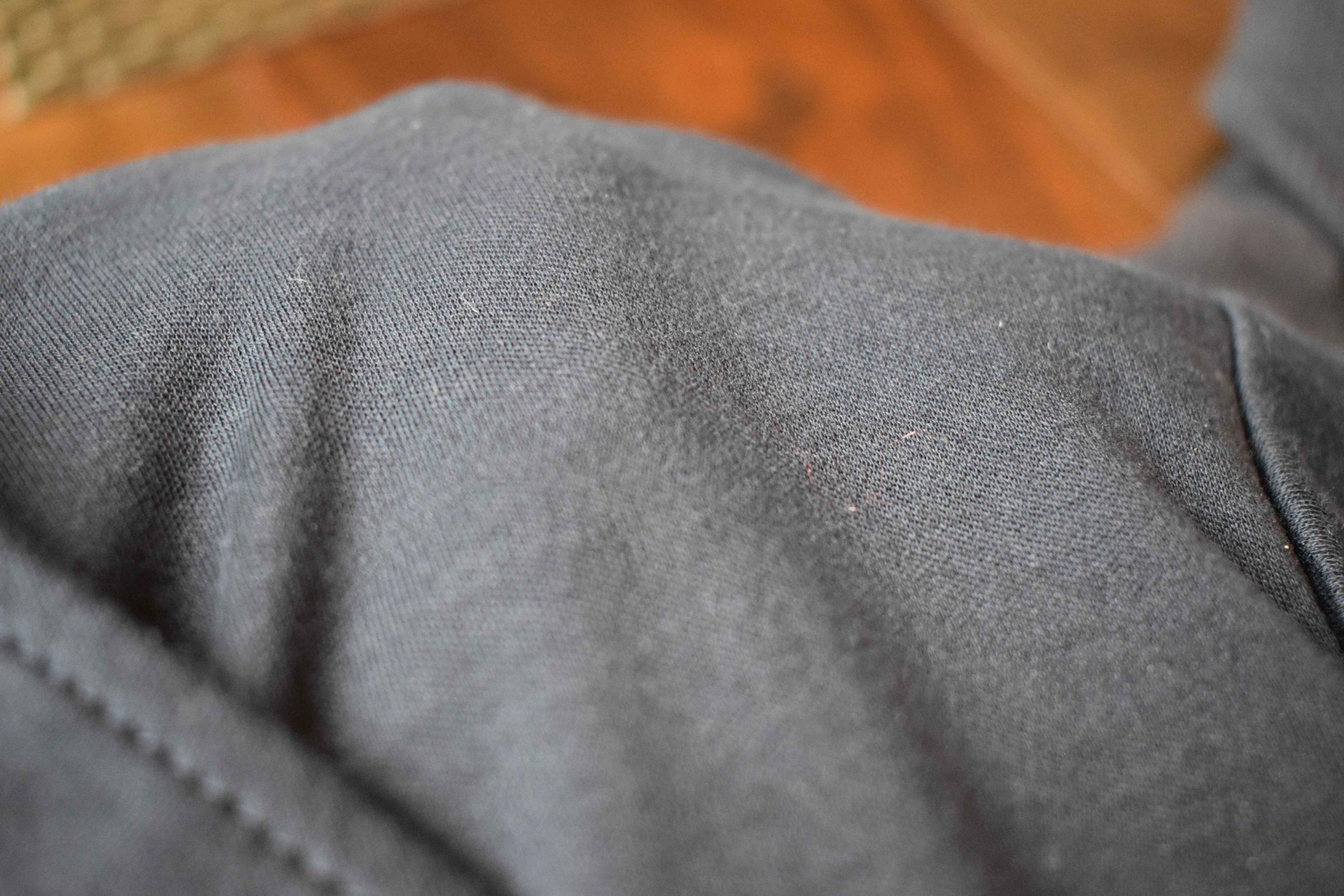 Sea Island Cotton close up